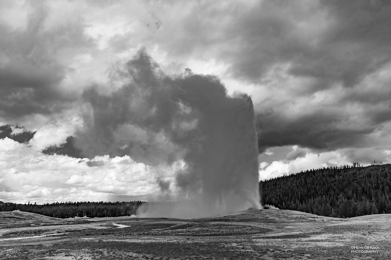 Old Faithful, Yellowstone NP, b&w, WY, USA May 2018-1.jpg