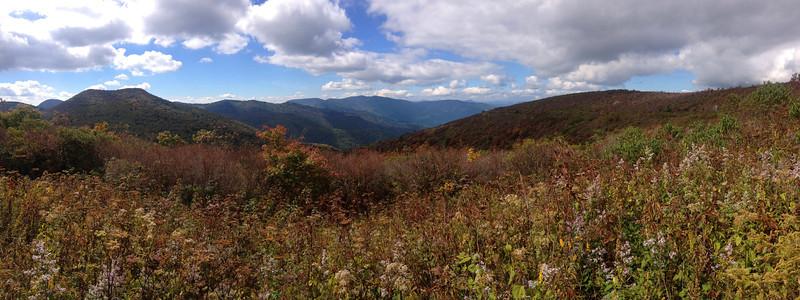 Ivestor Gap Trail -- 5,800'