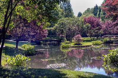 Gibb's Garden