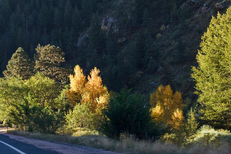 Canyon Color 2.jpg