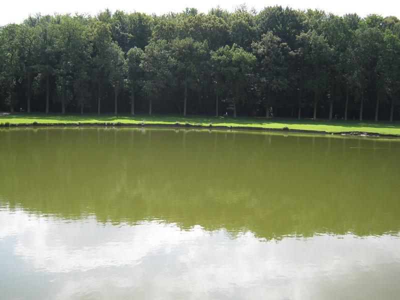 park tervuren 2012-07-22 15.jpg