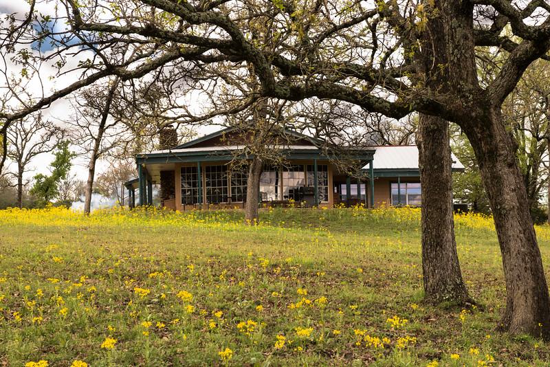 2016-03-12 Big Valley Ranch in Donie 012.jpg