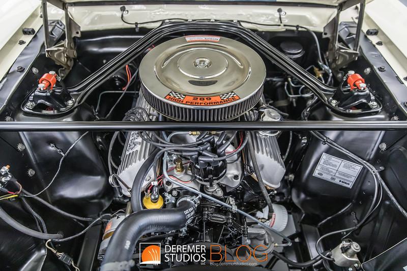 2019 RM - 1965 Shelby Mustang GT350001A - Deremer Studios LLC