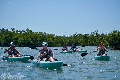 1230PM Mangrove Tunnel Kayak Tour - Cowan, James & Cundari