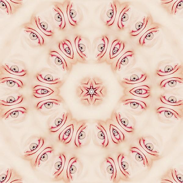 31025_mirror3.jpg
