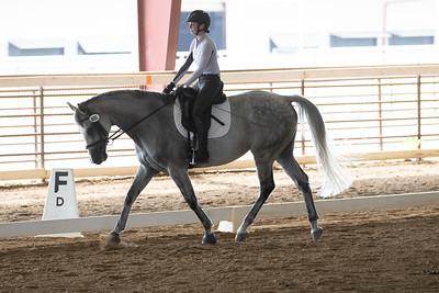 Horse 400
