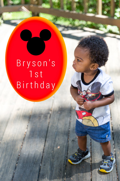 Bryson's First Birthday