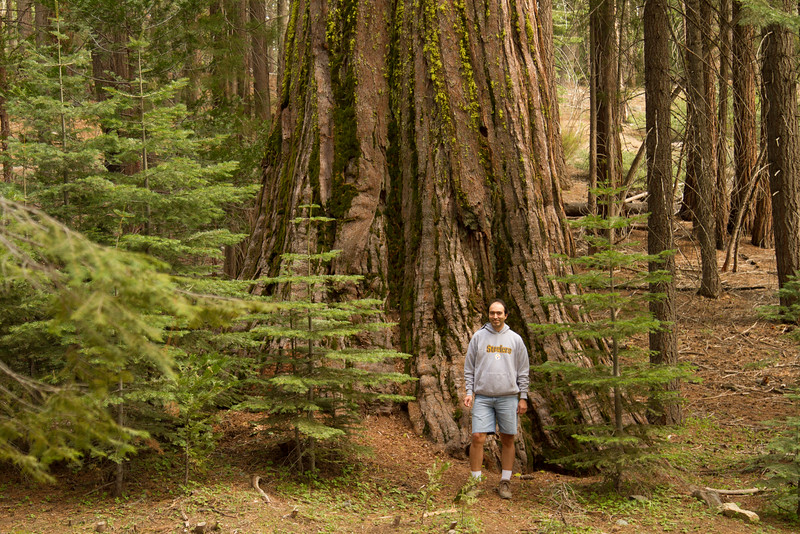 20150504-Yosemite-7D-IMG_6470.jpg