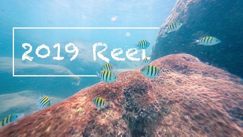 fish-1thumb.jpg