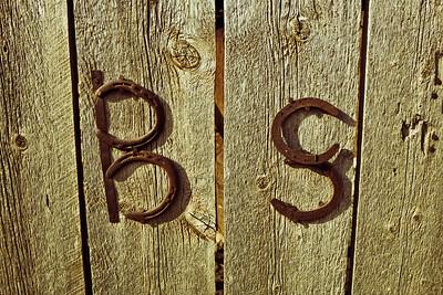 Typography & Signage