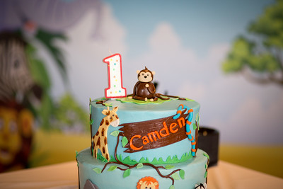 Birthday Party // Camden's 1st