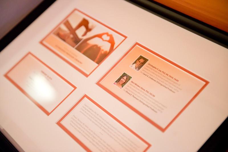 SON - Distinguished Professorship Awards