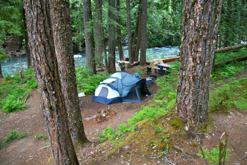 Best campsite ever. Mt. Rainier, Ohanapecosh, site 18-21.   Loop C I think?