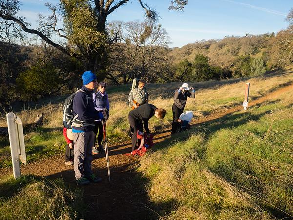 Henry Coe - Pacheco Creek hike