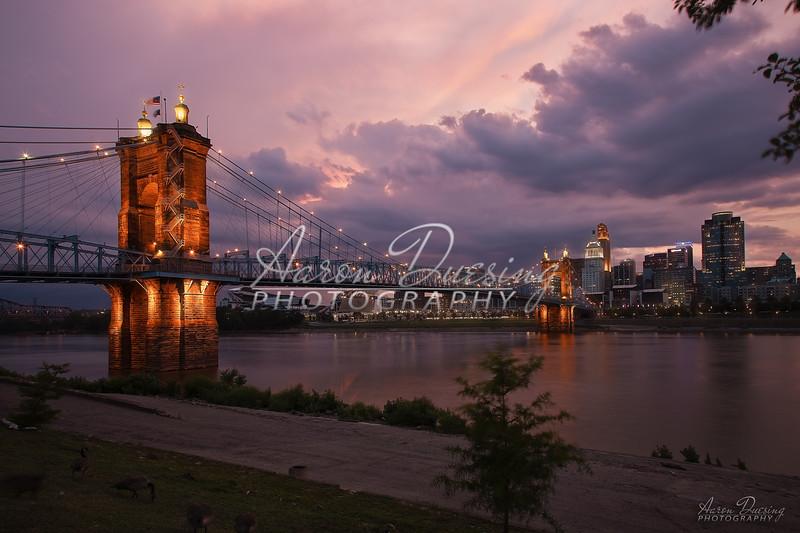 Roebling-05.jpg