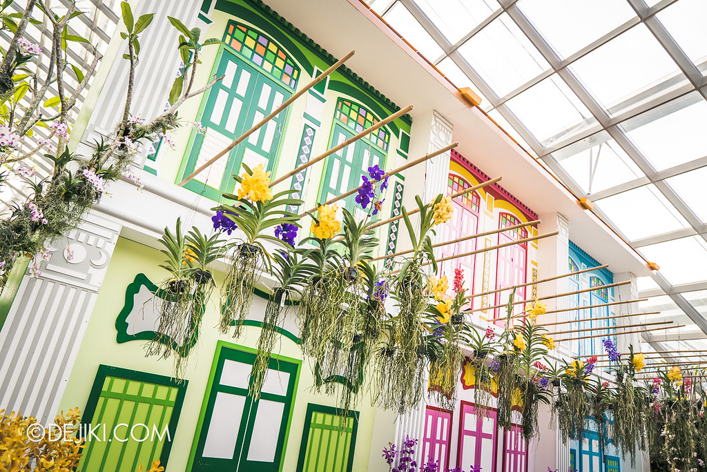 Gardens by the Bay - Orchid Extravaganza 2018 / Shophouses dangling orchids