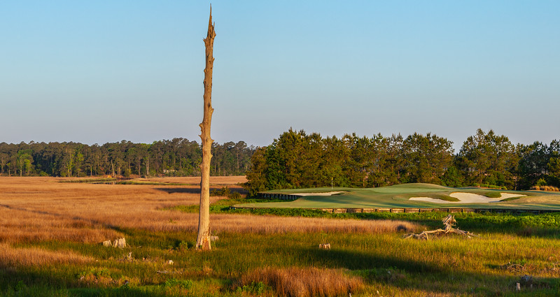 Carolina National Golf Photography