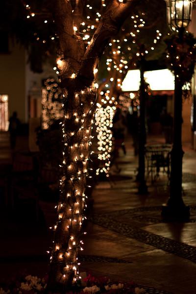 Christmas - 2009.jpg