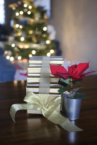 2019-12-22_ChristmasDecor-4421.JPG