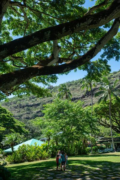 Hawaii2019-623.jpg