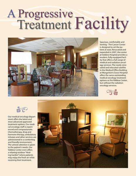 Cancer-Brochure-Blue-Ridge-HealthCare-2011-12.jpg