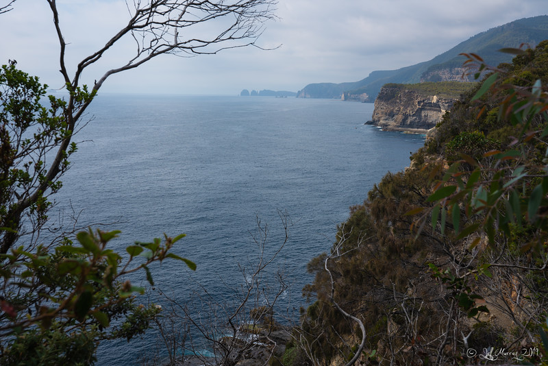 Tasman Arch lookout