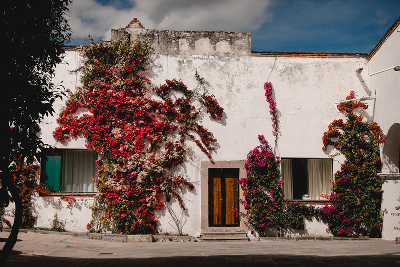 G&D (Boda, Hacienda Los Cues, Querétaro)-3.jpg