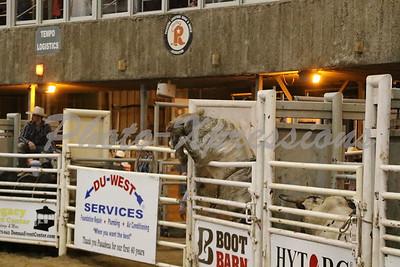 Bull Riding Saturday Night Sept 29