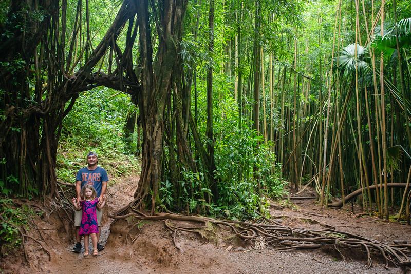Hawaii2019-840.jpg