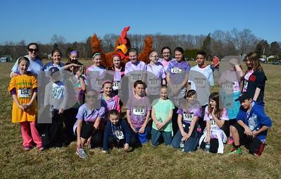 Strong Farm Chicken Run 041215