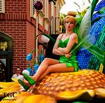 IMAGE: http://www.tgcphotography.us/photos/i-MLqG4VZ/0/Th/i-MLqG4VZ-Th.jpg