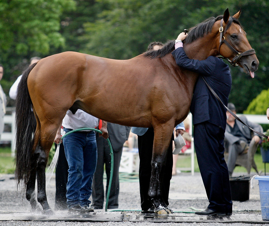 . In this June 7, 2008 file photo, Big Brown\'s owner Michael Iavarone hugs Big Brown after the 140th Belmont Stakes at Belmont Park in Elmont, N.Y.  The Kentucky Derby and Preakness winner did not finish at Belmont. The race was won by Da\'Tara. (AP Photo/Kathy Willens)