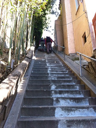 Stair Walks in Los Angeles