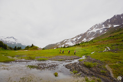 Expedition Alaska // Web