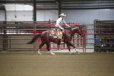 67. AMA Ranch Reining