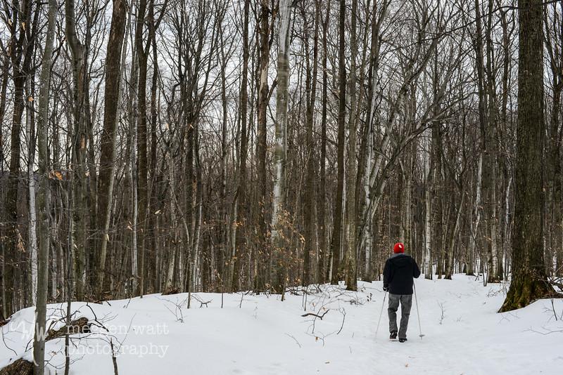 walking leelanau-5321.jpg