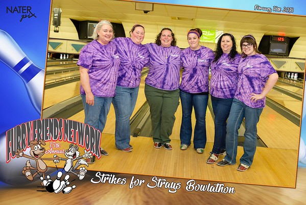 Strikes for Strays 2018
