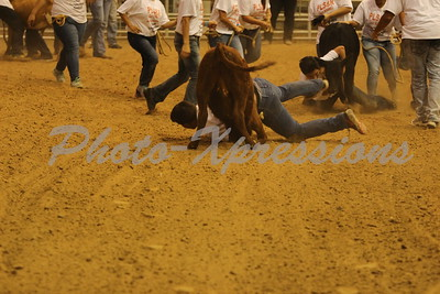 Calf Scramble 19th Sat