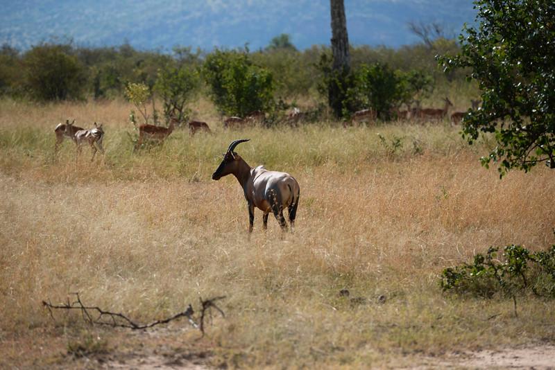 2016 Mercy House Vision Trip Kenya - Day 4 014.jpg