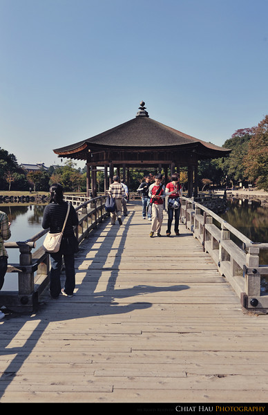 Finally we are here on the bridge Ukimido Pavilion @ Sagi-Ike lake