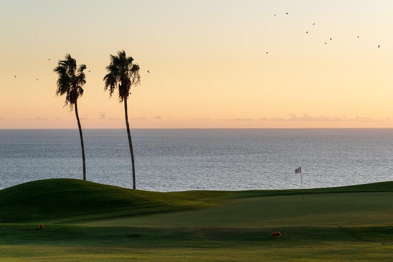 Golf Adeje_20191013_9156.jpg