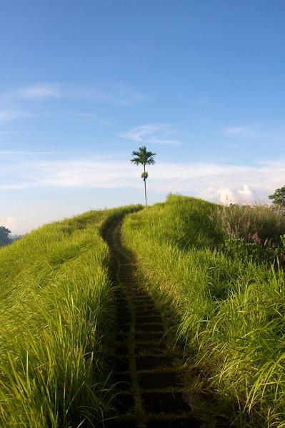 indonesia22.jpg