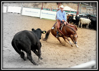 2012 Western Riding  Events  Sweden