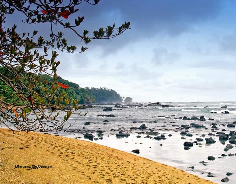 beach1865.jpg