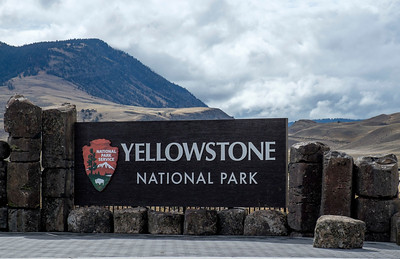 Yellowstone and Grand Tetons 2016