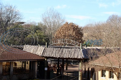 January Day At Caldwell Zoo by Susan Wells