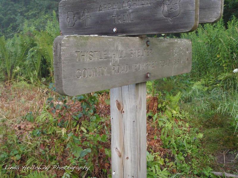 It amazed me to see trail signs along the way to give us direction.