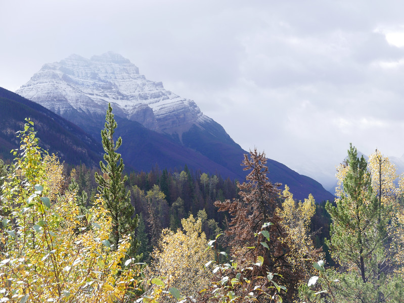 Mountains near Athabasca Falls