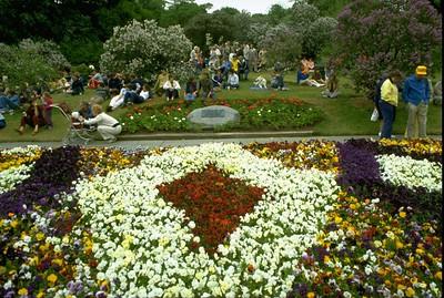 Highland Park Lilacs & Festival