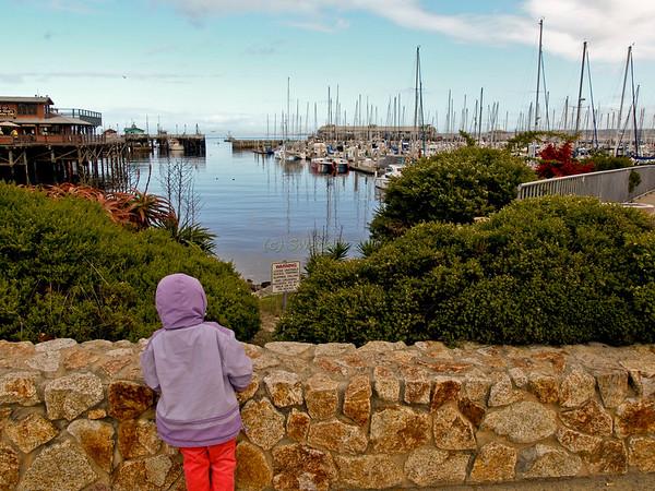 Monterey_2007
